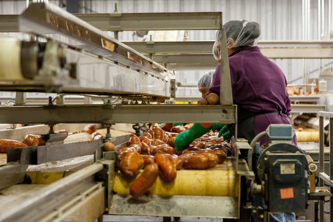 food processing concept